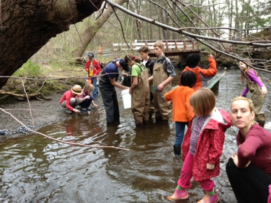 Kids from the Hudson Valley Homeschool Roots & Shoots group help an environmental scientist catch eels.